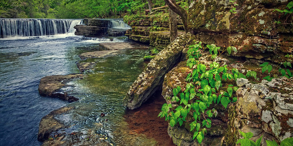 'Along Duck River' ~ Old Stone Fort State Park, TN
