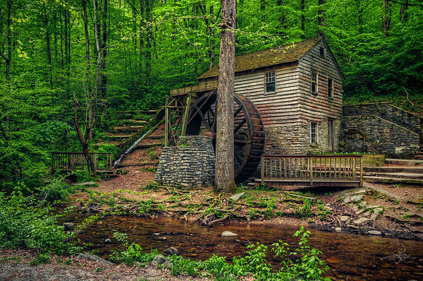 'Rice Mill' ~ Norris Dam State Park, TN