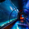 """<h2>The Secret Underwater Passage</h2> <br/>This was shot under the Mandalay Bay hotel in Las Vegas where they have this lavish aquarium.  It's really gorgeous and dreamy under there, as you can tell.  This area has all kinds of sharks and other wild-lookin' things that were swimming all around me.  I was fortunate enough to take a private tour of the place thanks to the nice people at the MGM/Mirage management company, who also owns the Mandalay Bay.  That allowed me to take the time I needed to set up this 5-exposure HDR shot without tourists getting in the way.<br/><br/>One time I did find a nurse shark in the Caribbean.  It was a baby.  I followed it for a while until it occurred to me that it might be swimming back to its mom.  That sudden realization made me turn around pretty quick.<br/><br/>All of this underwater stuff reminds me of watching those Discovery channel shows about strange ocean creatures.  I swear I could watch those things all day.  I can't get over how some of these things have evolved to fit their environment... just amazing.  My favorite creatures are cephalopods ... I never get tired of those documentaries!<br/><br/>- Trey Ratcliff<br/><br/><a href=""""http://www.stuckincustoms.com/2009/06/25/the-secret-underwater-tunnel/"""" rel=""""nofollow"""">Click here to read the rest of this post at the Stuck in Customs blog.</a>"""