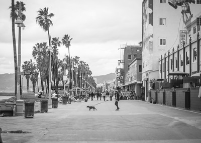 Venice Boardwalk Winter 2019