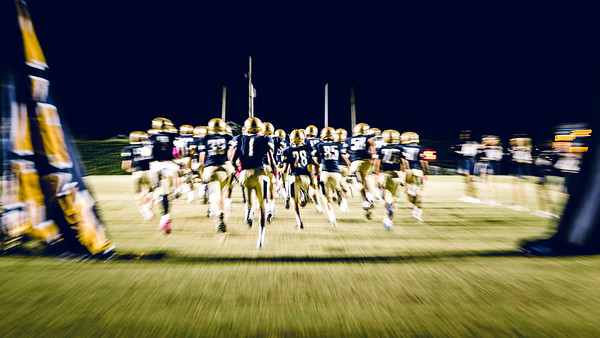 Lusher Lions