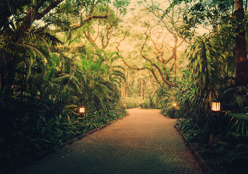 The Gardens Of Bangalore