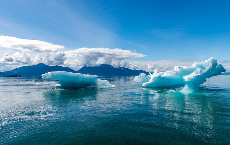Iceberg Wings