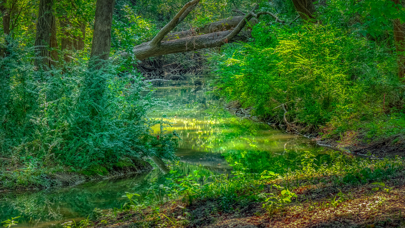 Bend_In_The_Creek