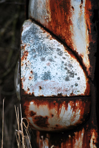 The Beautiful colours of rust