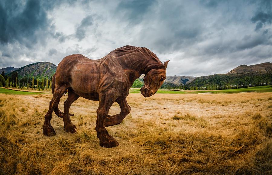 Horses Alive