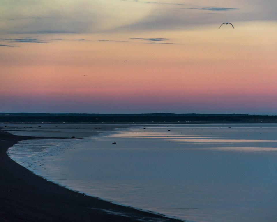 Image_Alaska_South_Summers_0647