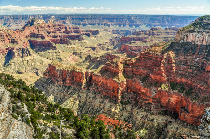 Grand Canyon Red Rock
