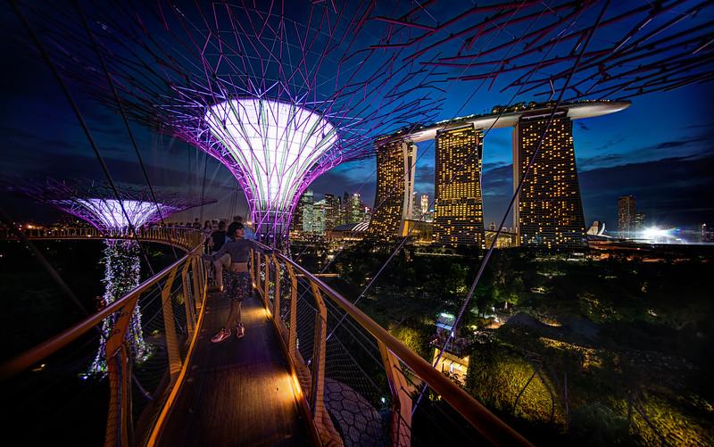 Ten Hours In Singapore