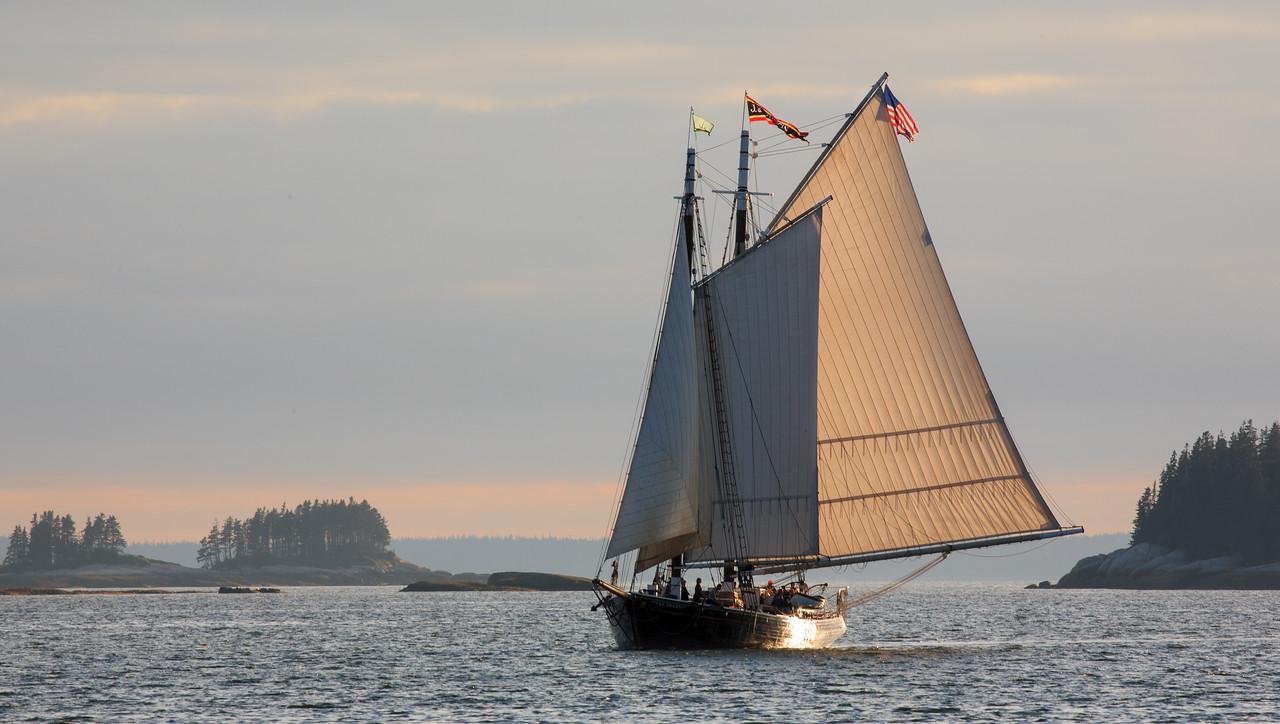 A schooner entering Deer Isle Thorofare at dusk.