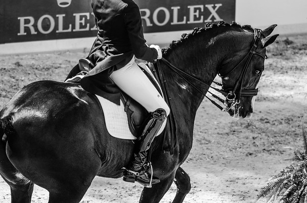 Central Park Horse Show - U.S. Open Dressage Grand Prix