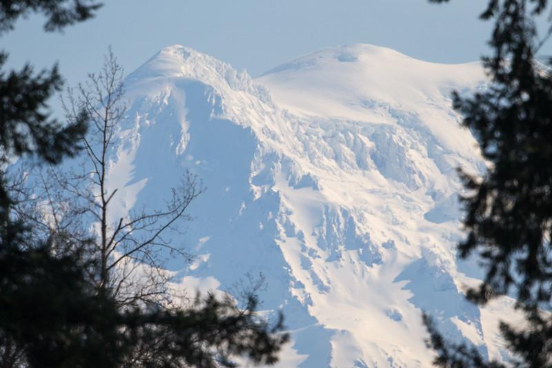Mt  Rainier-5534