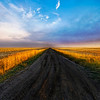 "<h2>On the Road to Somewhere</h2> <br/>After an accident on an ATV, I was stuck on this road for a long time while waiting for rescue.  Luckily, the camera and tripod were uninjured and the time I was waiting for happened to be sunset.  There are worse things in life than this!<br/><br/>- Trey Ratcliff<br/><br/><a href=""http://www.stuckincustoms.com/2008/09/25/on-the-road-to-somewhere/"" rel=""nofollow"">Click here to read the rest of this post at the Stuck in Customs blog.</a>"