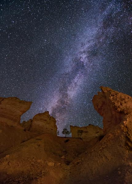 Along the Navajo Trail 3