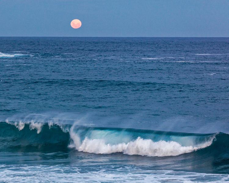 Bondi Moon Waves