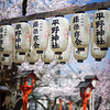 "<h2>The Lamps and the Sakura</h2> <br/>Sakura is the Japanese word for the Cherry Blossom.  I don't know if I can explain how crazy the Japanese people are about this yearly bloom!  For one thing, every local newscast has a big ""Cherry Blossom"" report that has in-depth descriptions of exactly where the trees are blooming in the country and upcoming predictions.  The wave sweeps across the island of Japan and rich graphics cover the screen like a cold front, assaulting the countryside.<br/><br/>I took this photo with the Nikon D3S.  I've recently taken to carrying two cameras with me.  I take the Nikon D3X with me, and it's usually attached to the tripod.  This is the one that I use for 90% of my landscapes.  While I carry that, slung around my neck and shoulder, Chewbacca-style, is the Nikon D3S, which I use for people shots, DOF shots, and videos.<br/><br/>This was taken at F/1.4 with a 50mm prime lens.  The shutter was 1/8000 and the ISO 200.  As always, this ""EXIF"" information is available on the SmugMug site if you click through and do a tiny bit of investigative clicking!<br/><br/>- Trey Ratcliff<br/><br/><a href=""http://www.stuckincustoms.com/2010/04/28/sakura-trees/"" rel=""nofollow"">Click here to read the rest of this post at the Stuck in Customs blog.</a>"