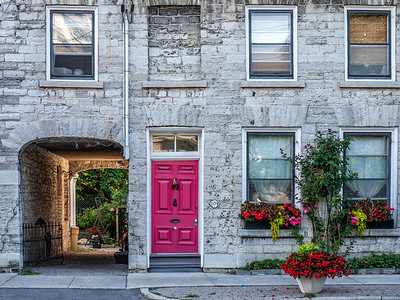 The Fuchsia Door