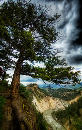Yellowstone Through the Years -  A Storm Brewing in the Valley  - Trey RatcliffClick here to read the rest of this post at the Stuck in Customs blog.