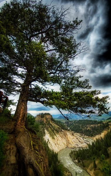 """<h2>Yellowstone Through the Years -  A Storm Brewing in the Valley</h2> <br/> <br/>- Trey Ratcliff<br/><br/><a href=""""http://www.stuckincustoms.com/2010/12/28/yellowstone-through-the-years/"""" rel=""""nofollow"""">Click here to read the rest of this post at the Stuck in Customs blog.</a>"""