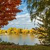 Travel_Photography_Blog_Canda_Montreal_Autumn_Frame