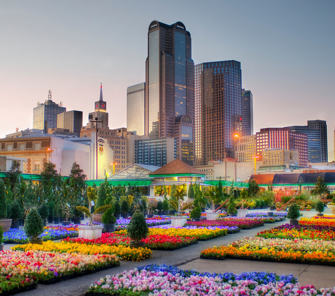 Downtown Dallas from the Flower Market Here is that photo of Dallas I promised. - Trey RatcliffClick here to read the rest of this post at the Stuck in Customs blog.