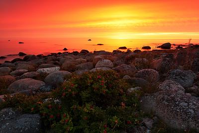 Sunset in midsummer