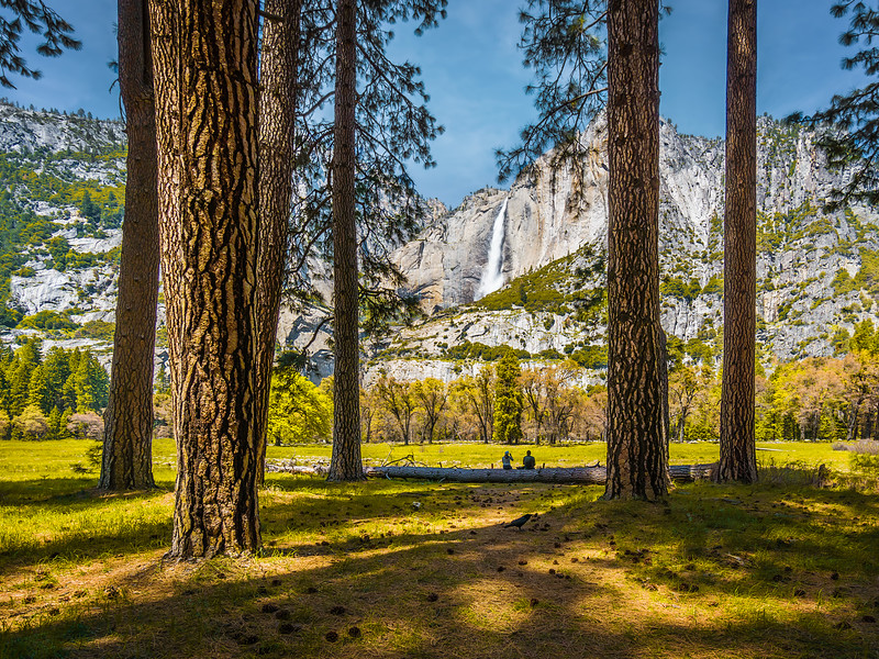 Travel_Photography_Blog_California_Yosemite_Cooks_Medow_View