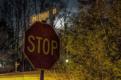 Right on Palomino