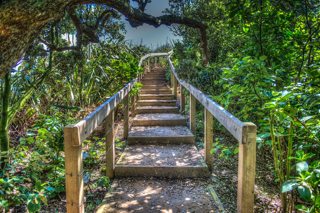 Path to Beauty