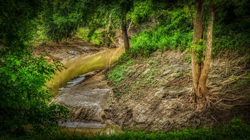 Leon_River