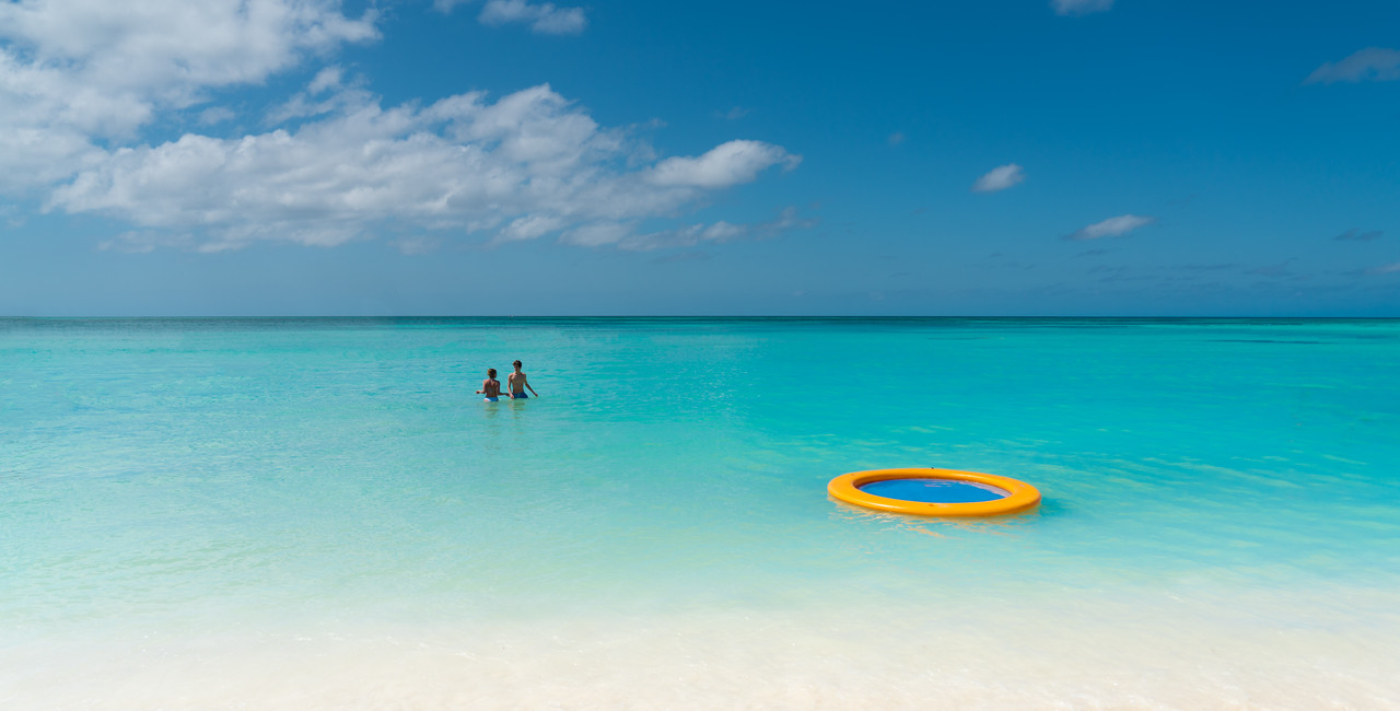 Yellow Ring In Aruba
