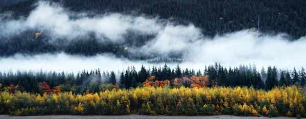 Fall Colors Along Alouette Lake