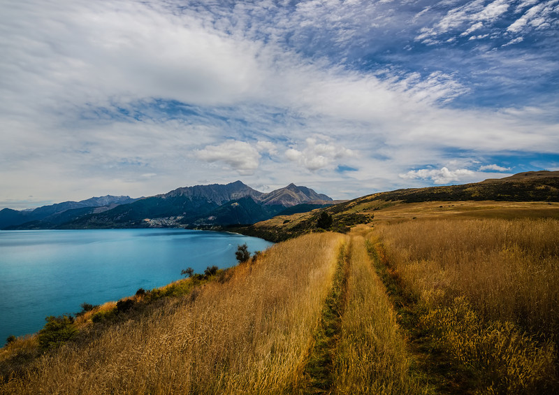 The Fields Along the Lake in Queenstown
