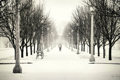 'Cold Lonely Walk' ~ St. Louis, MO