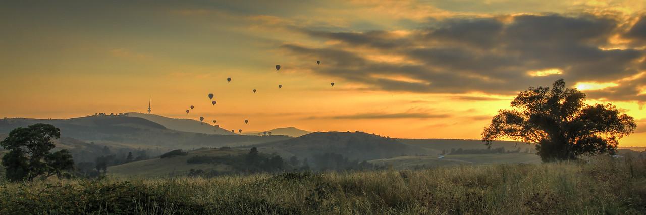 Molonglo Balloon Dawn