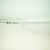 The End Of The Antarctica Photowalk