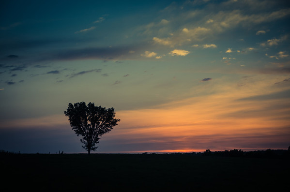 'I Stand Alone' ~ Rural Missouri