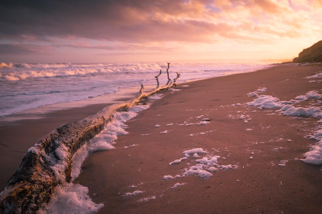 Foamy Shores