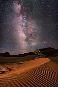 Dune Ripples