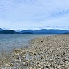 Oysters In the Tide - Cortes Island