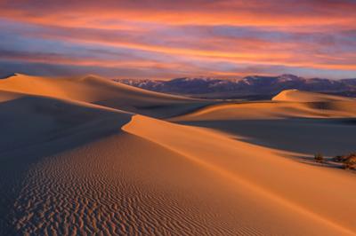 Dune Wonderland