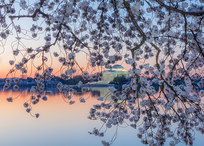 Tidal Basin, Jefferson