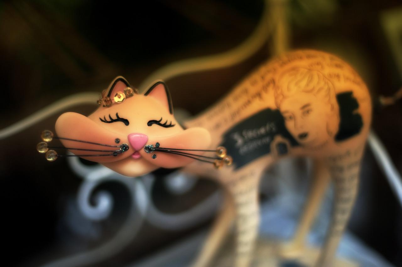 Cute Cat in Paris Market