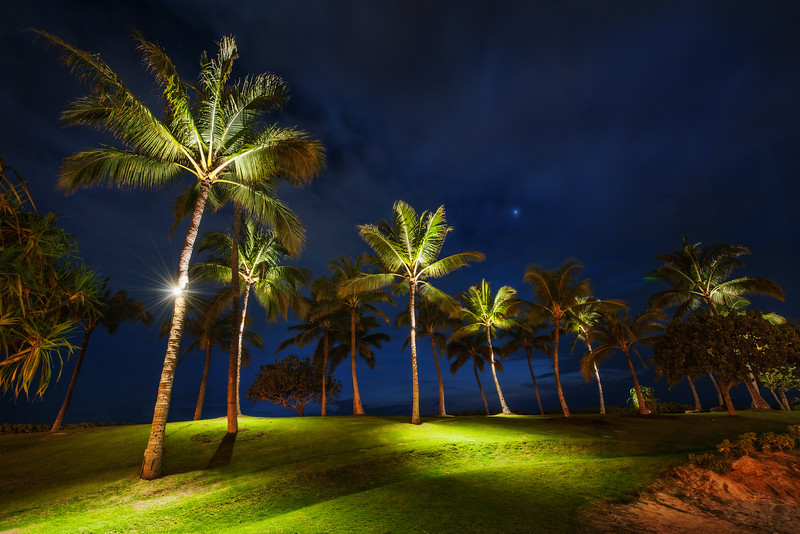 Palm Trees at Night One night in Oahu we were doing some photography along a beach.  Off in the distance we saw some palm trees that were lit from the bottom.  It was about a quarter mile from anything else, so that was sort of strange.  But I thought it was so interesting to see them lit from the bottom with small green pools of light underneath that I decided to walk over there and see what was going on.  After I got over there, there were endless compositions of these various trees.  I grabbed about five different angles and then took a midnight-nature break of my own...-Trey RatcliffCheck out the full post at the Stuck in Customs blog.
