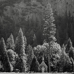 Chapel and Tall Tree, Yosemite Valley