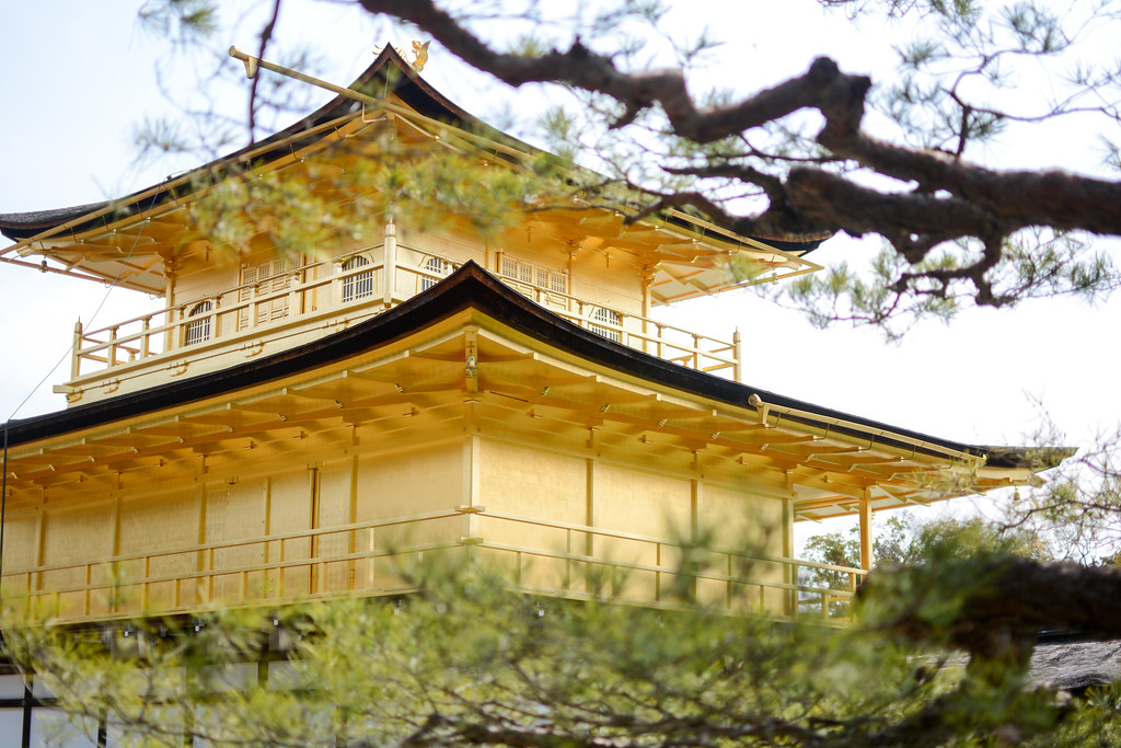 Kinkakuji Temple | Kyoto, Japan