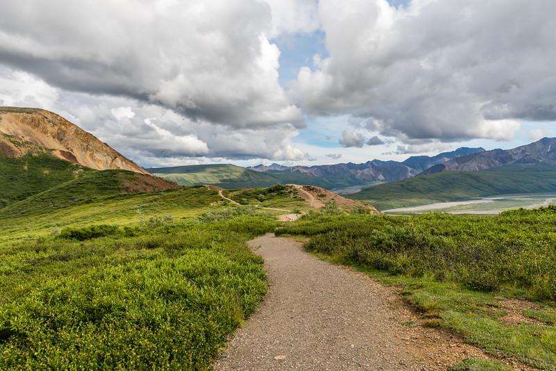 Hiking Denali National Park