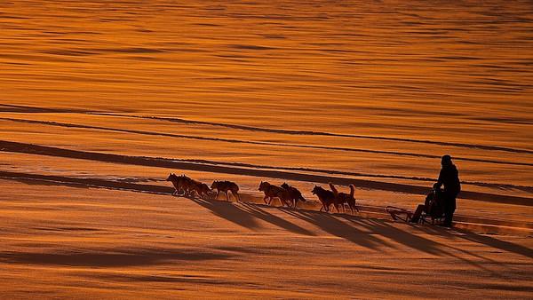 Lappland -30°C perfektes Licht - Sorsele, Schweden /  Lappland -22°F perfect Light - Sorsele, Sweden - mehr dazu im Blog: Lappland bei -30°C
