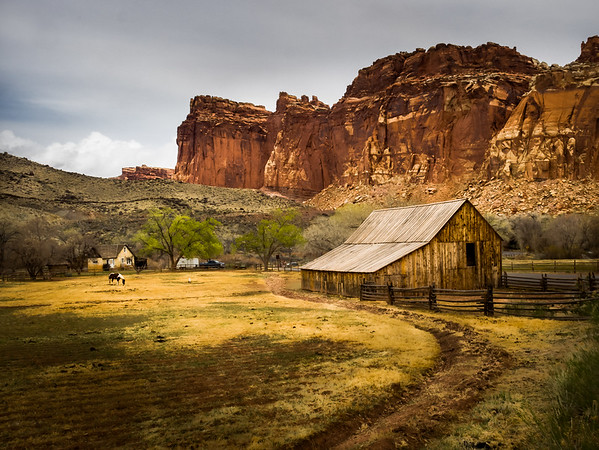 Horse and Barn-Capitol Reef National Park
