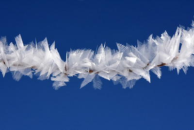 Hoarfrost Ice Crystals